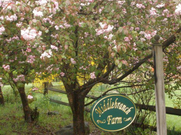 Middlebranch Farm, LLC