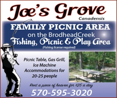 Joe's Grove - Family Picnic Area - Canadensis