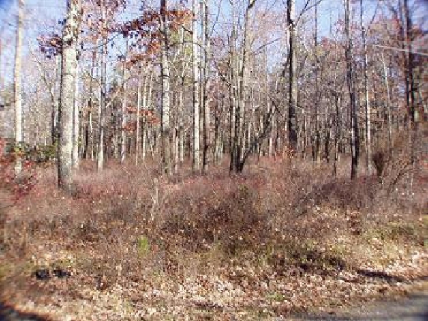 BEAUTIFUL 2 ACRE LOT